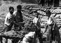 A5 Landarbeiter